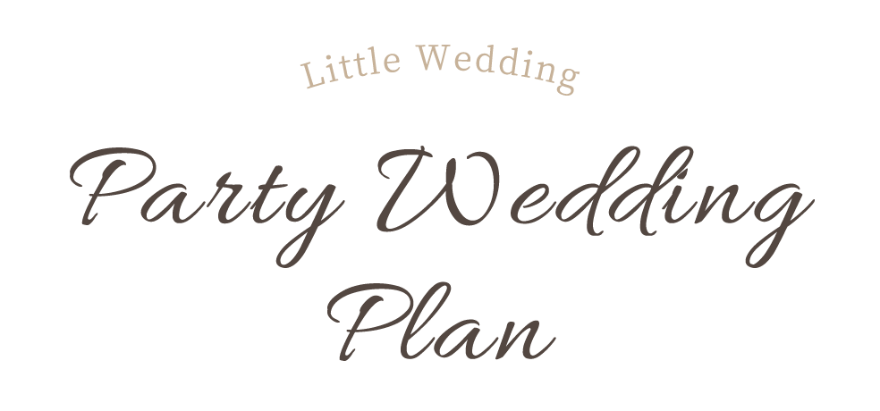 Party Wedding Plan