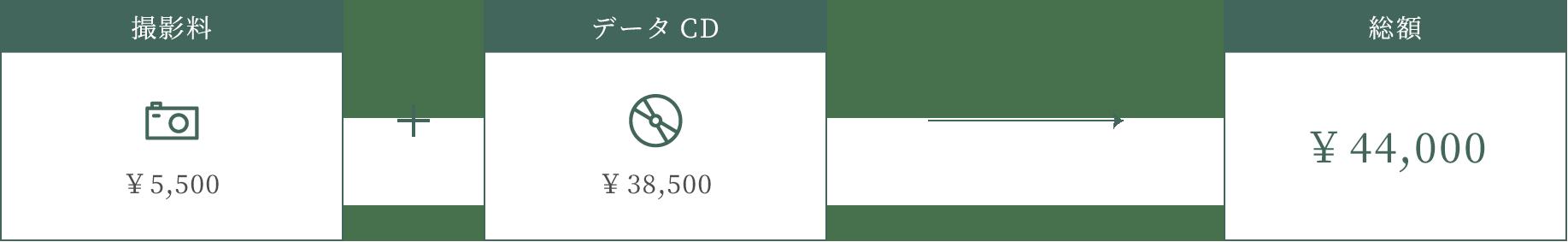 データCDをご購入の場合